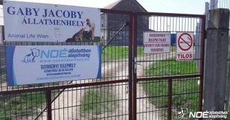 Ehrenamtlicher Tag in unserem neuen Tierheim in Szergény