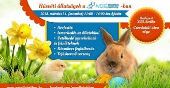 Tierische Ostern im NOAH Tierheim Ungarn