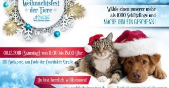 Weihnachtsfest der Tiere und Weihnachtsspendenaktion 2018