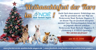 Weihnachtsfest der Tiere im NOAH Tierheim Ungarn