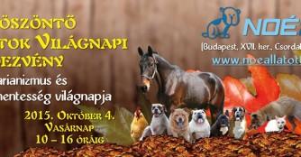 Welttiertagsfeier im NOAH Tierheim Ungarn