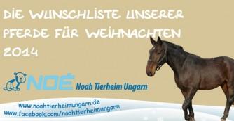 Wunschliste unserer Pferde- und Eselherde