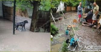 Unsere Quarantänestation wurde vom Sturm überflutet