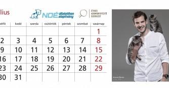 Die NOÉ Kalender 2018 sind da!