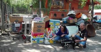 Viele-viele Spendenfahrten :)