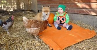 Interview mit dem Gründer unseres Tierheimes