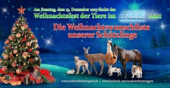 Unsere Wunschliste zu Weihnachen 2015